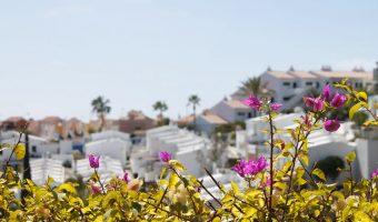 Nystart på Gran Canaria